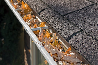 half round gutters cleanings